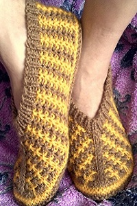 Следики жёлто-коричневые