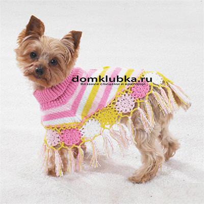 Стильная одежда для собачки